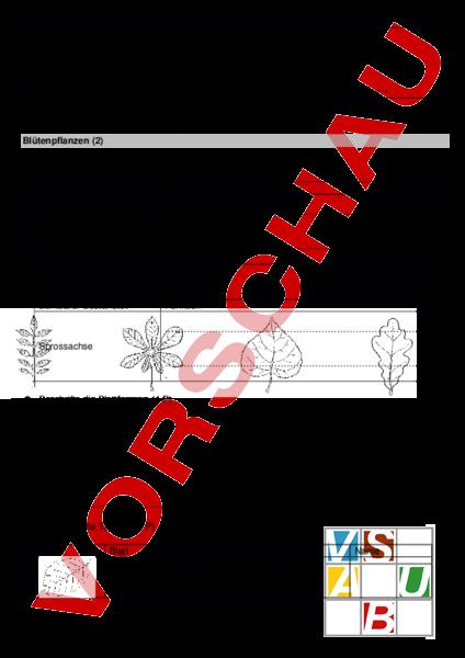 Arbeitsblatt: LZK Biologie: Blütenpflanzen - Biologie - Gemischte Themen