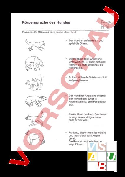 Körpersprache Hund Arbeitsblatt