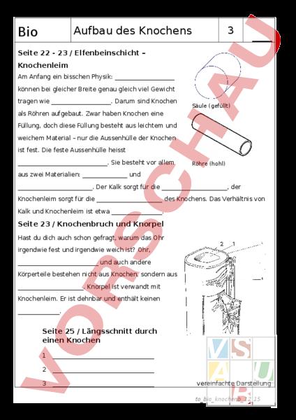 arbeitsblatt aufbau des knochens arbeitsblatt mit l sungen biologie anatomie physiologie. Black Bedroom Furniture Sets. Home Design Ideas