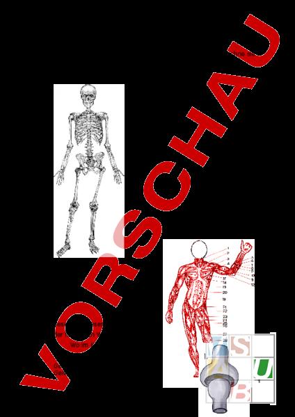 www.unterrichtsmaterial.ch - Biologie - Anatomie / Physiologie - NMM ...