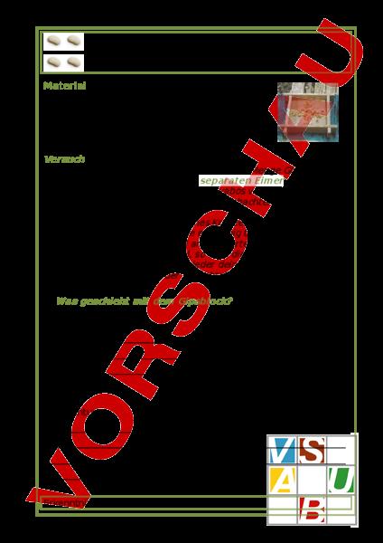 www.unterrichtsmaterial.ch - Biologie - Pflanzen / Botanik - Kraft ...