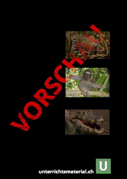 Arbeitsblatt: AB Steckbrief Tiere vom Amazonas - Geographie - Südamerika