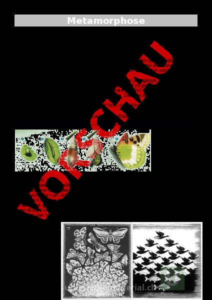 Arbeitsblatt: Metamorphose - Bildnerisches Gestalten - Anderes Thema
