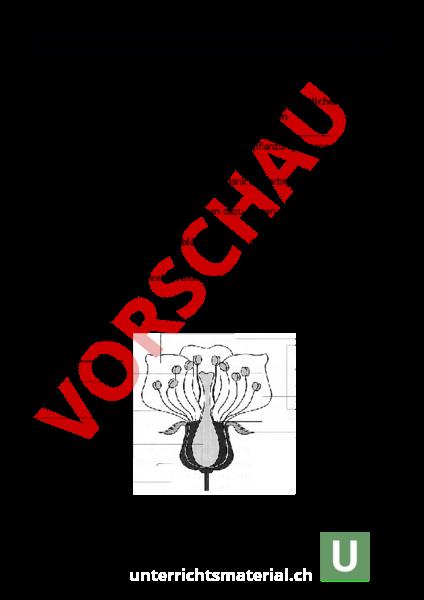 Erfreut Spaß Dank Mathe Arbeitsblatt Ideen - Arbeitsblätter für ...