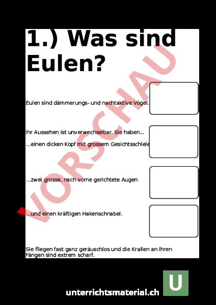 Beste Virtuelle Eule Tablette Dissektion Arbeitsblatt Galerie ...