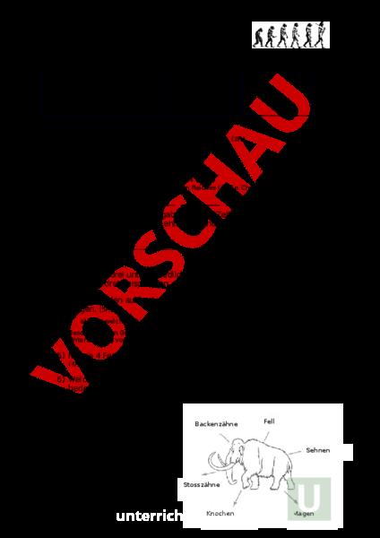 Arbeitsblatt: LZK Steinzeit - Geschichte - Urzeit