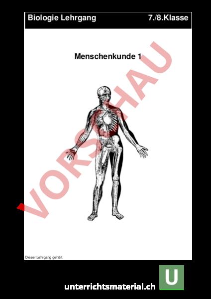 Arbeitsblatt: Menschenkunde-Sinnesorgane - Biologie - Anatomie ...