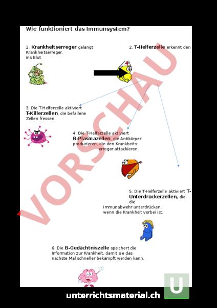 Arbeitsblätter Biologie Immunsystem : Unterrichtsmaterial biologie gemischte themen