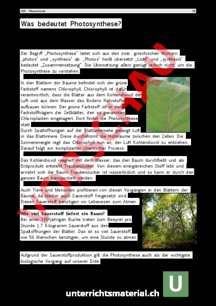 www.unterrichtsmaterial.ch - Biologie - Pflanzen / Botanik - Text ...