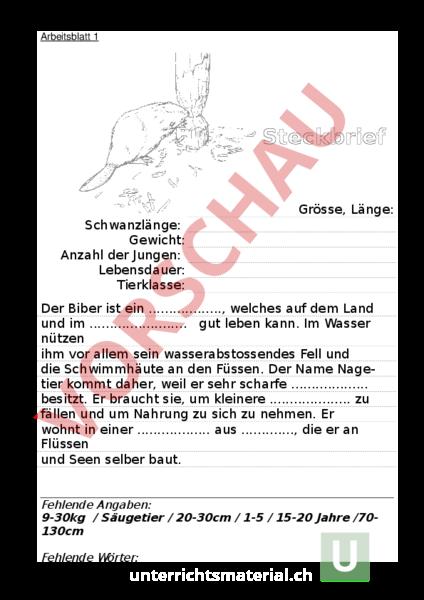 www.unterrichtsmaterial.ch - Biologie - Tiere - Der Biber ...