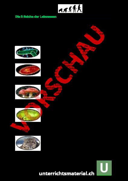 Arbeitsblatt: Dossier Wirbeltiere - Biologie - Gemischte Themen