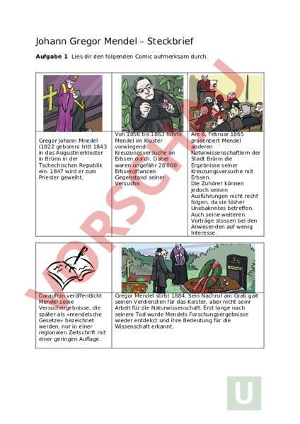 Zum Lesen Verlocken Luca Novelli Pdf Kostenfreier Download 6